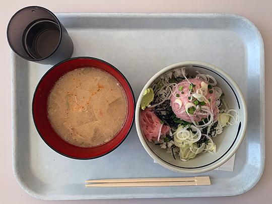 f:id:takahikonojima:20190131160114j:plain