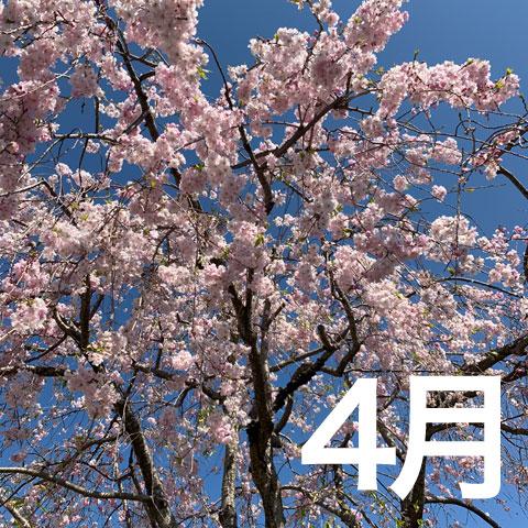 f:id:takahikonojima:20190501222021j:plain