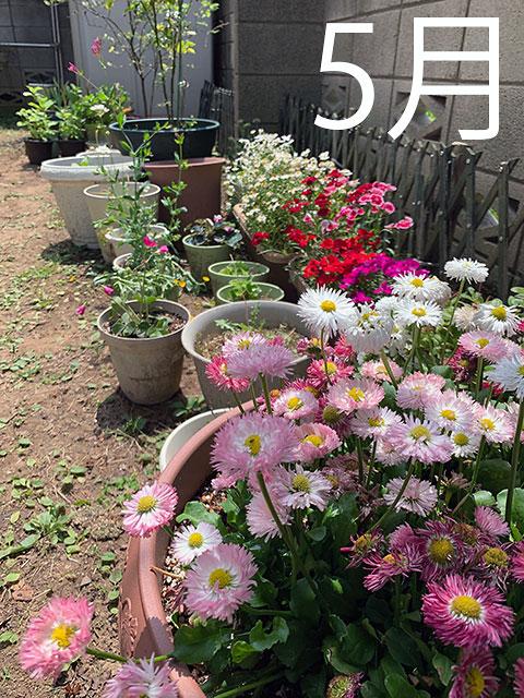 f:id:takahikonojima:20190607190006j:plain