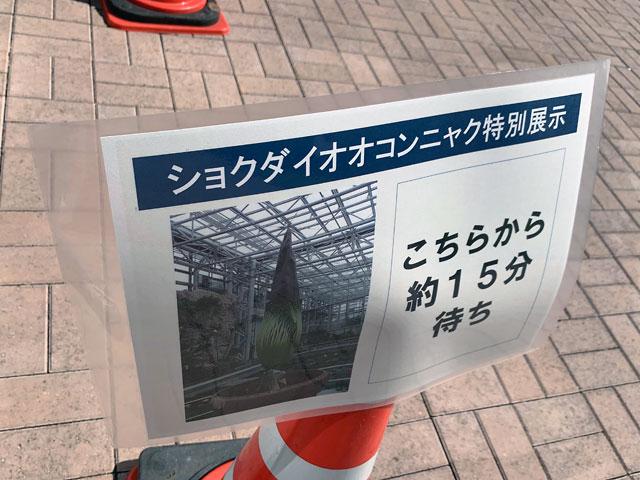 f:id:takahikonojima:20190807154508j:plain