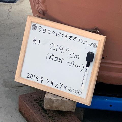 f:id:takahikonojima:20190807154604j:plain