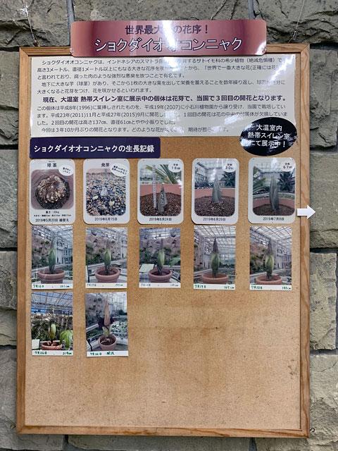 f:id:takahikonojima:20190807154726j:plain