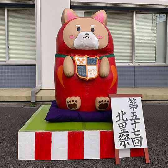 f:id:takahikonojima:20191118143918j:plain