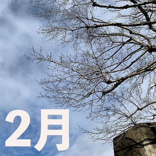f:id:takahikonojima:20200303123751j:plain