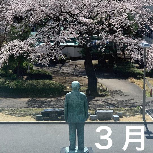 f:id:takahikonojima:20200407180642j:plain
