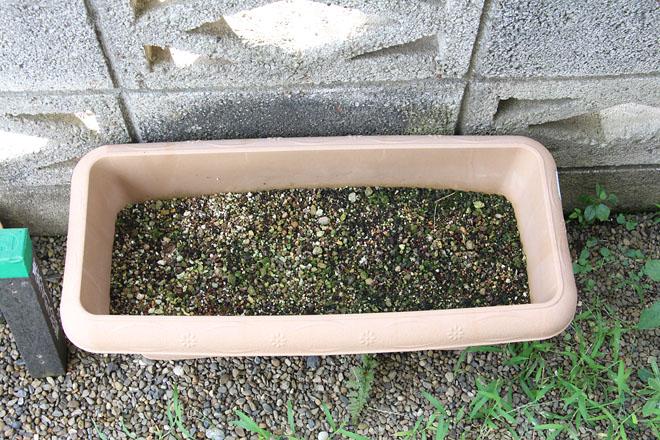 f:id:takahikonojima:20200910072737j:plain