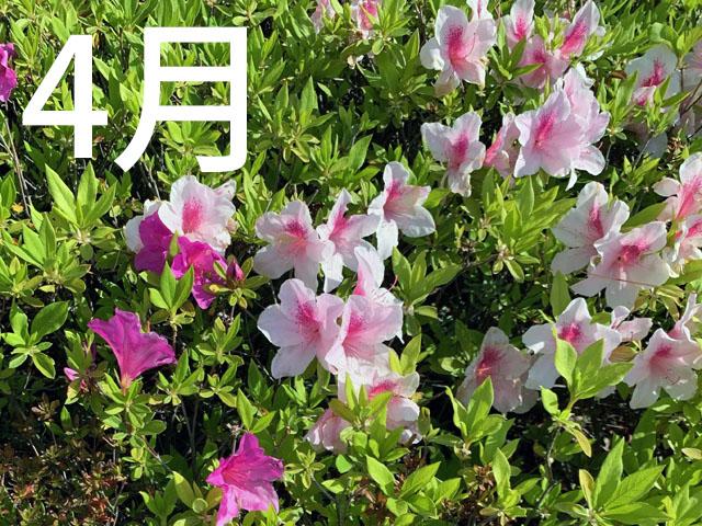 f:id:takahikonojima:20210421074339j:plain