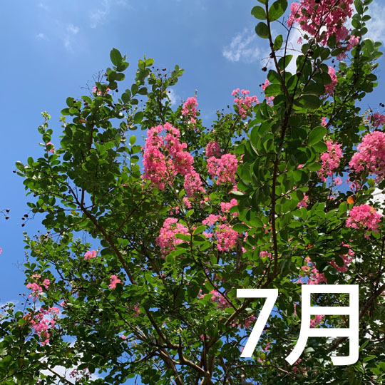f:id:takahikonojima:20210725091719j:plain