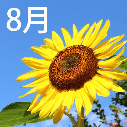 f:id:takahikonojima:20210801081250j:plain
