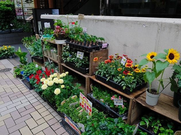f:id:takahiro91:20160814134241j:plain