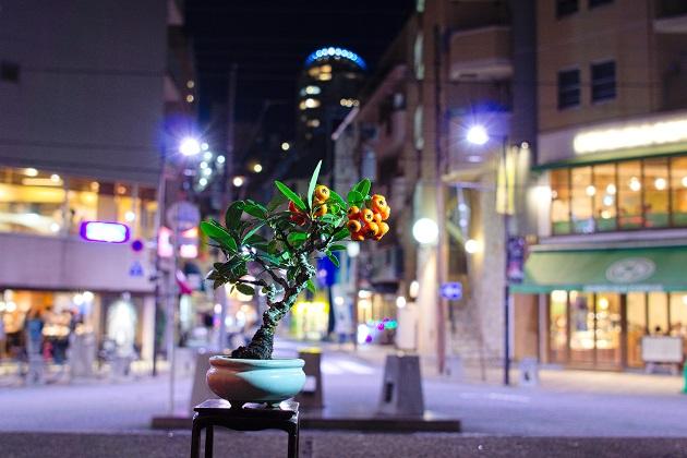 f:id:takahiro91:20161103205905j:plain