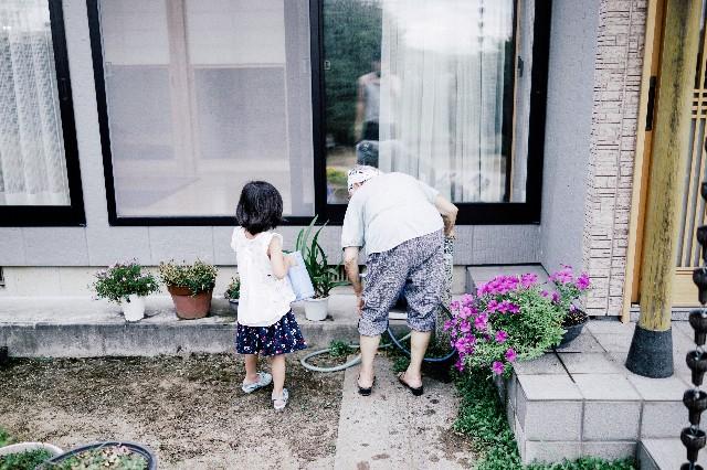 f:id:takahiro_photo:20190108012221j:image