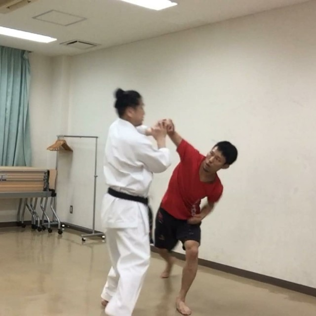 f:id:takahirokarate:20180426225504j:image