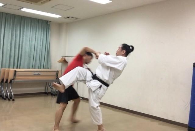f:id:takahirokarate:20180426225533j:image