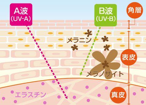 f:id:takahon:20180507092448j:plain