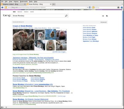 Bing 検索結果 テスト版 2012年2月