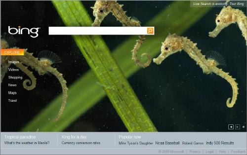 Bingのトップページ