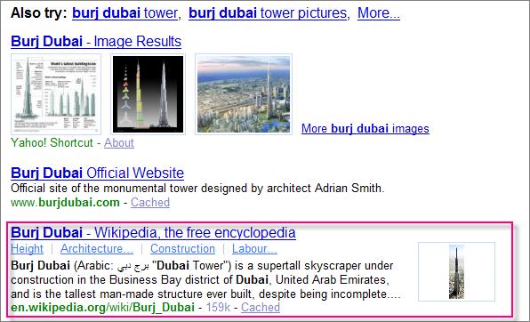 SearchMonkeyアプリによる検索結果の一例