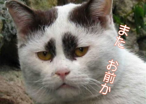 f:id:takajun7777:20160912152419j:image