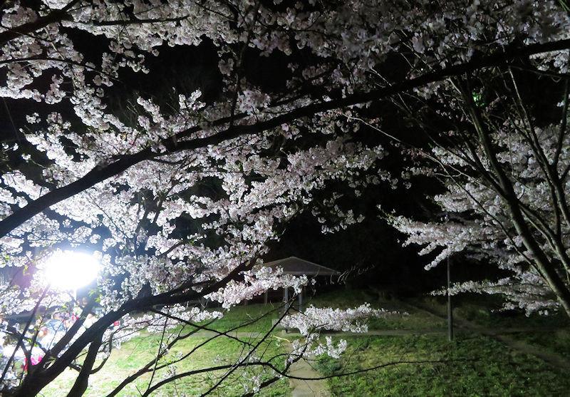 f:id:takajun7777:20180413193557j:image