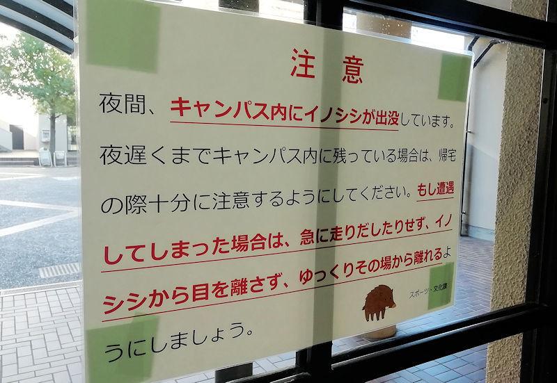 f:id:takajun7777:20191209212658j:plain