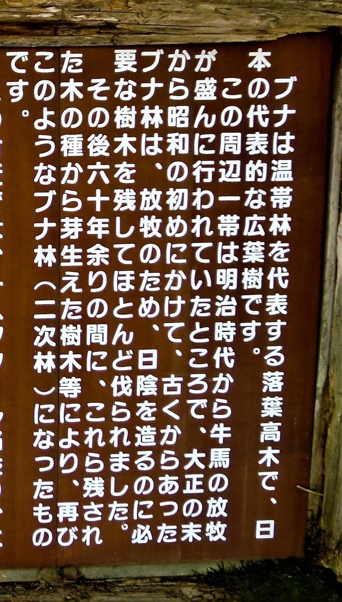 f:id:takakotakakosun:20190511175050j:plain