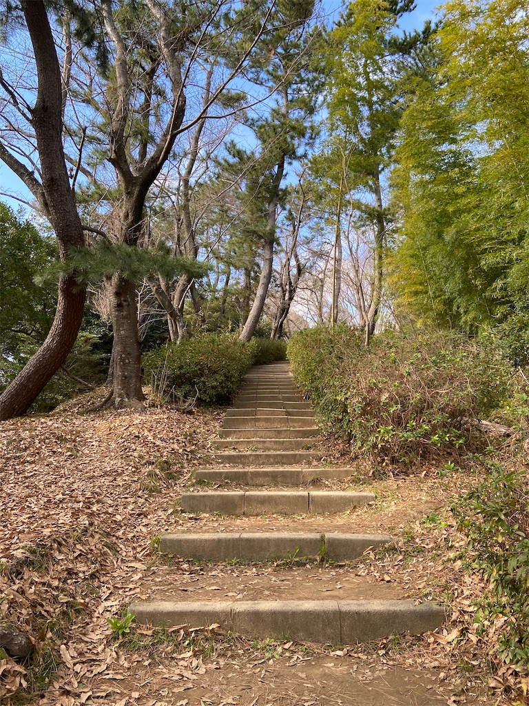 f:id:takakusaya-man:20200215090843j:image