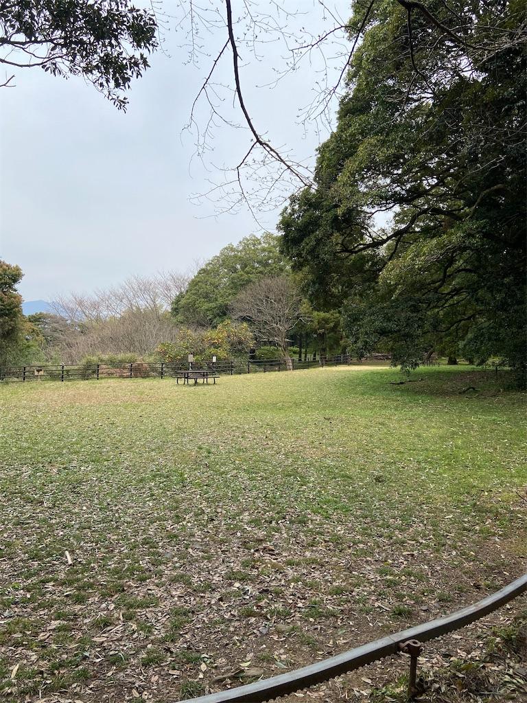 f:id:takakusaya-man:20200327174018j:image