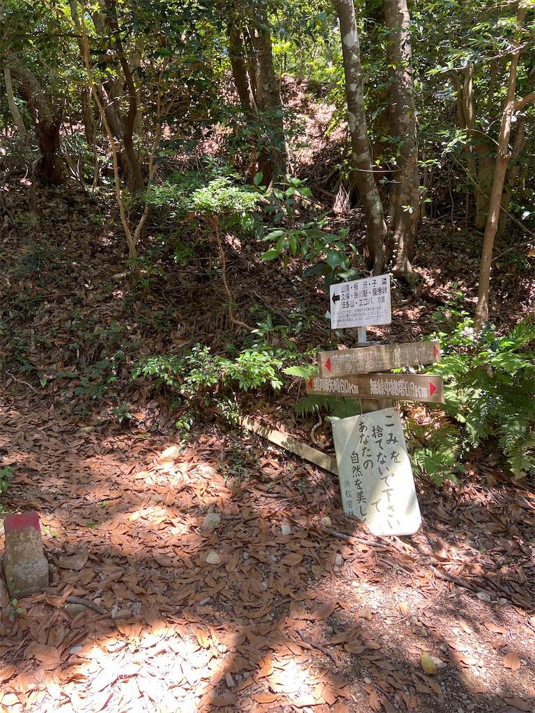 f:id:takakusaya-man:20200717095504j:image