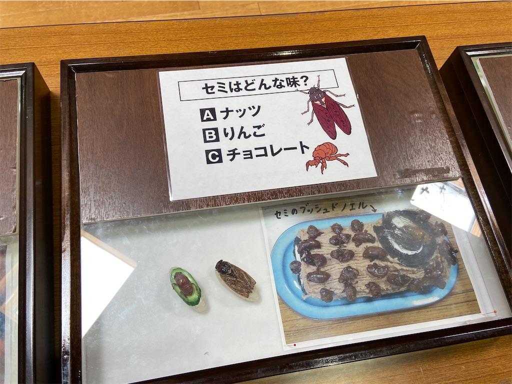 f:id:takakusaya-man:20200815055750j:image