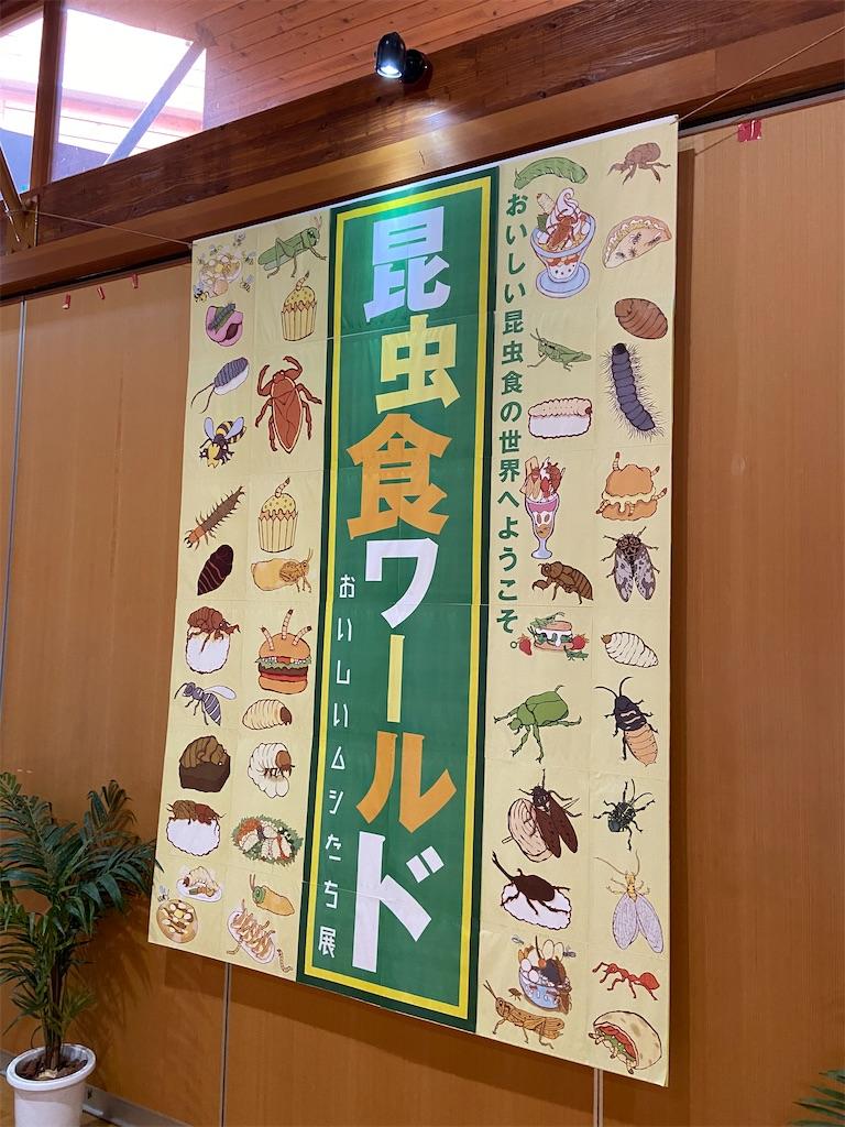 f:id:takakusaya-man:20200815055754j:image