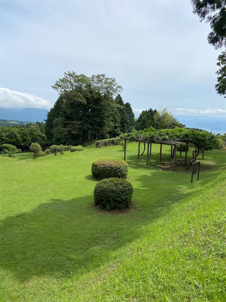 f:id:takakusaya-man:20210109074418j:image
