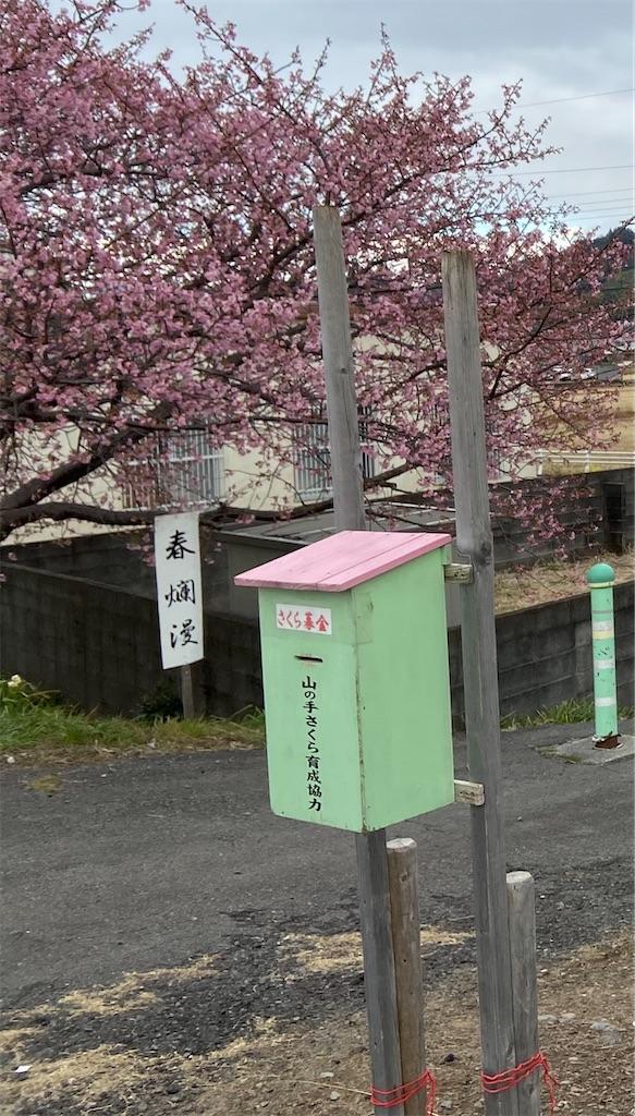 f:id:takakusaya-man:20210218105305j:image