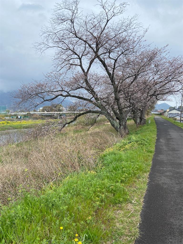 f:id:takakusaya-man:20210331184536j:image