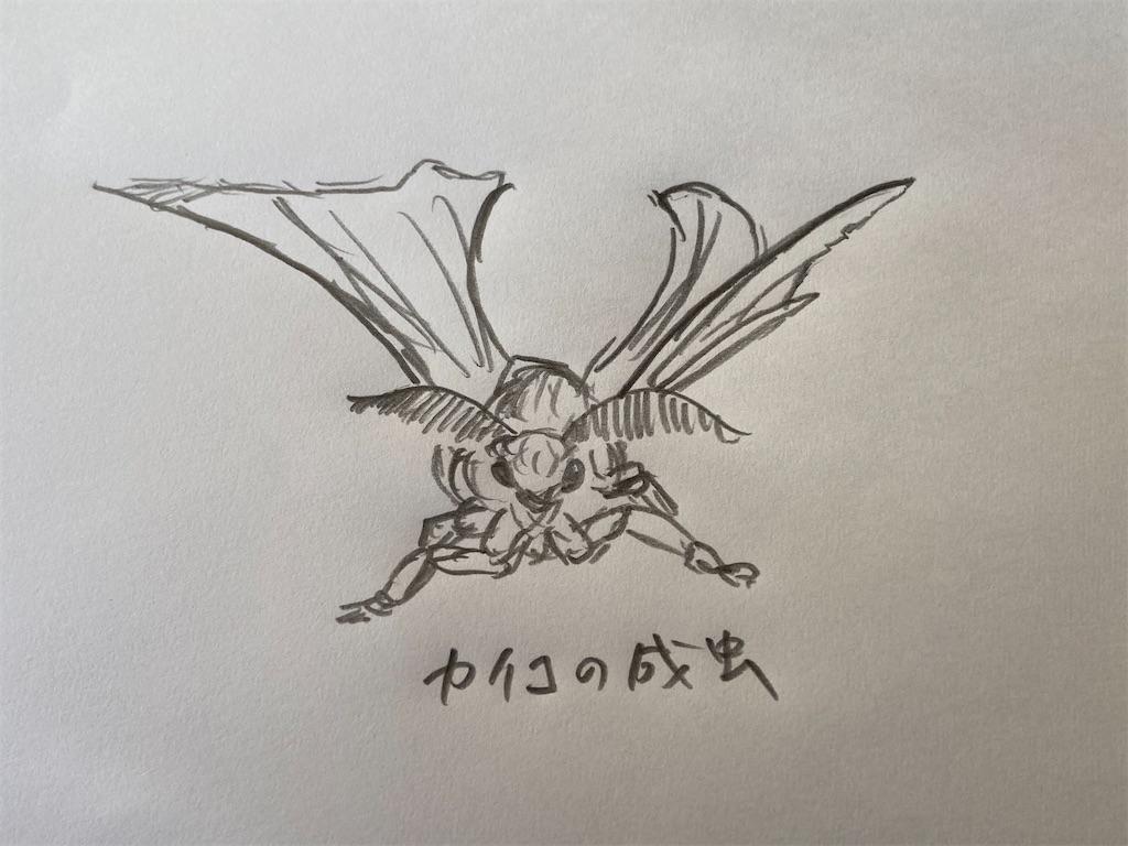 f:id:takakusaya-man:20210406152003j:image