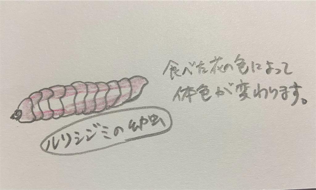 f:id:takakusaya-man:20210417193659j:image