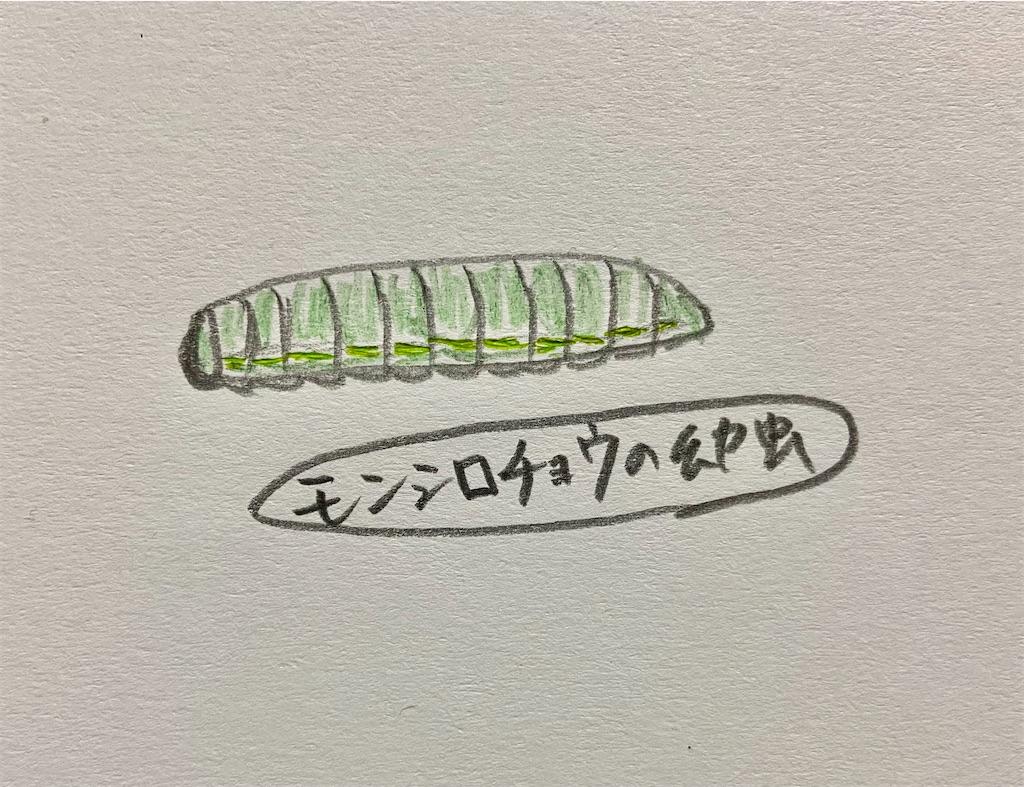 f:id:takakusaya-man:20210418144919j:image