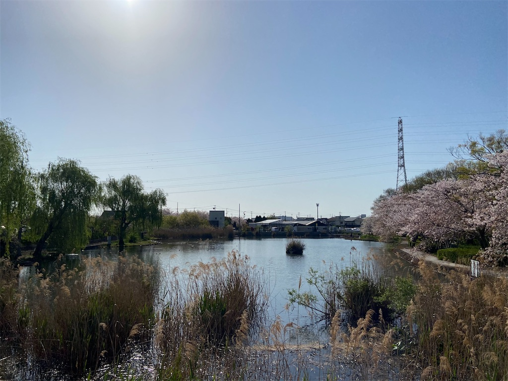 f:id:takakusaya-man:20210423144935j:image