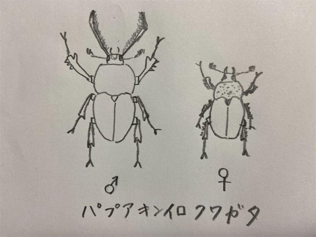 f:id:takakusaya-man:20210426103653j:image