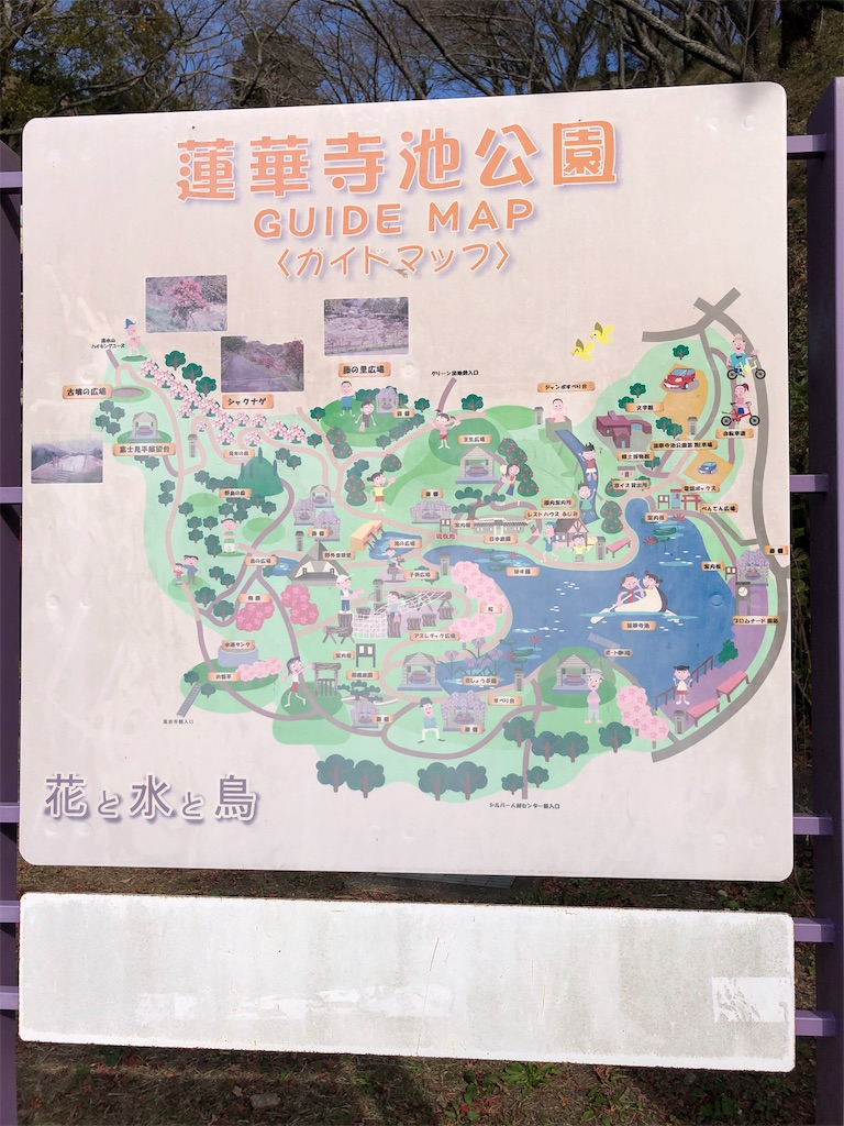 f:id:takakusaya-man:20210519114144j:image