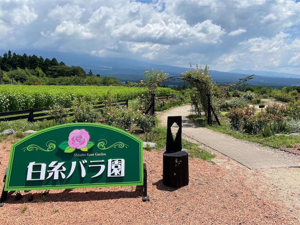 f:id:takakusaya-man:20210728191217j:image