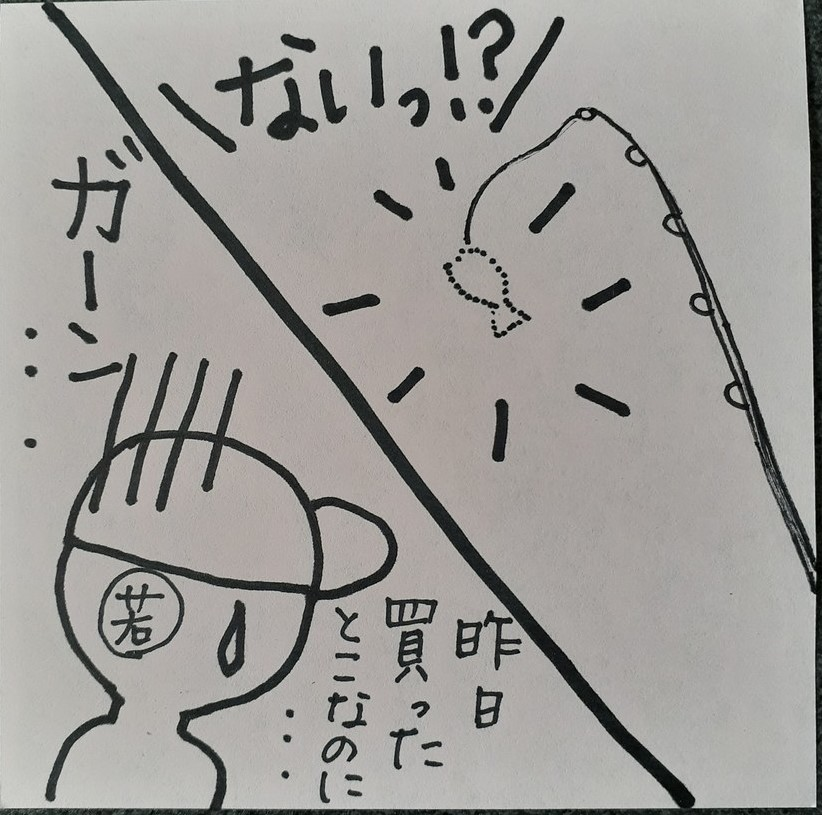 f:id:takamaru1136:20201116110646j:plain