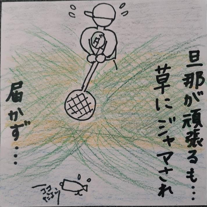 f:id:takamaru1136:20201116110701j:plain