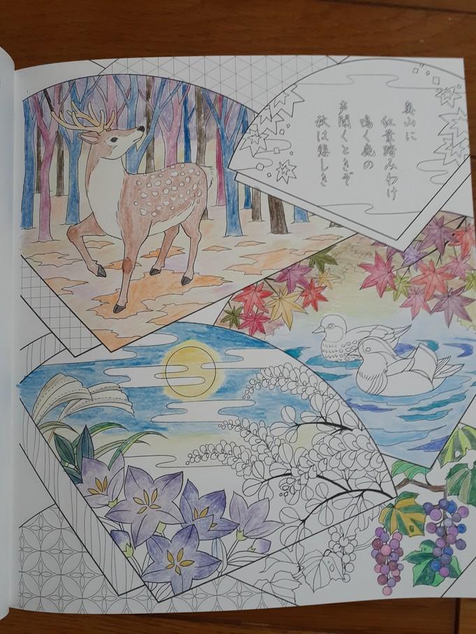 f:id:takamaru1136:20210502113650j:plain