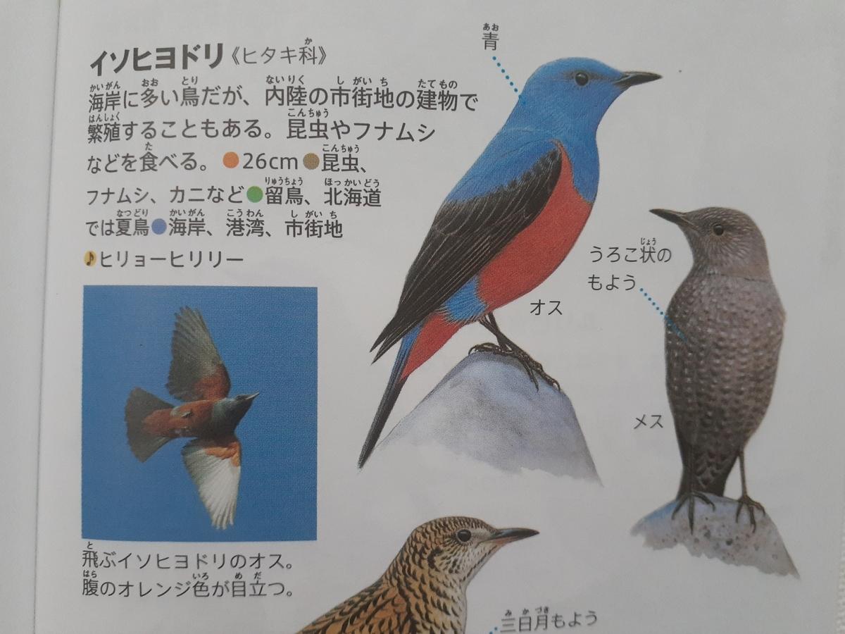 f:id:takamaru1136:20210524104834j:plain