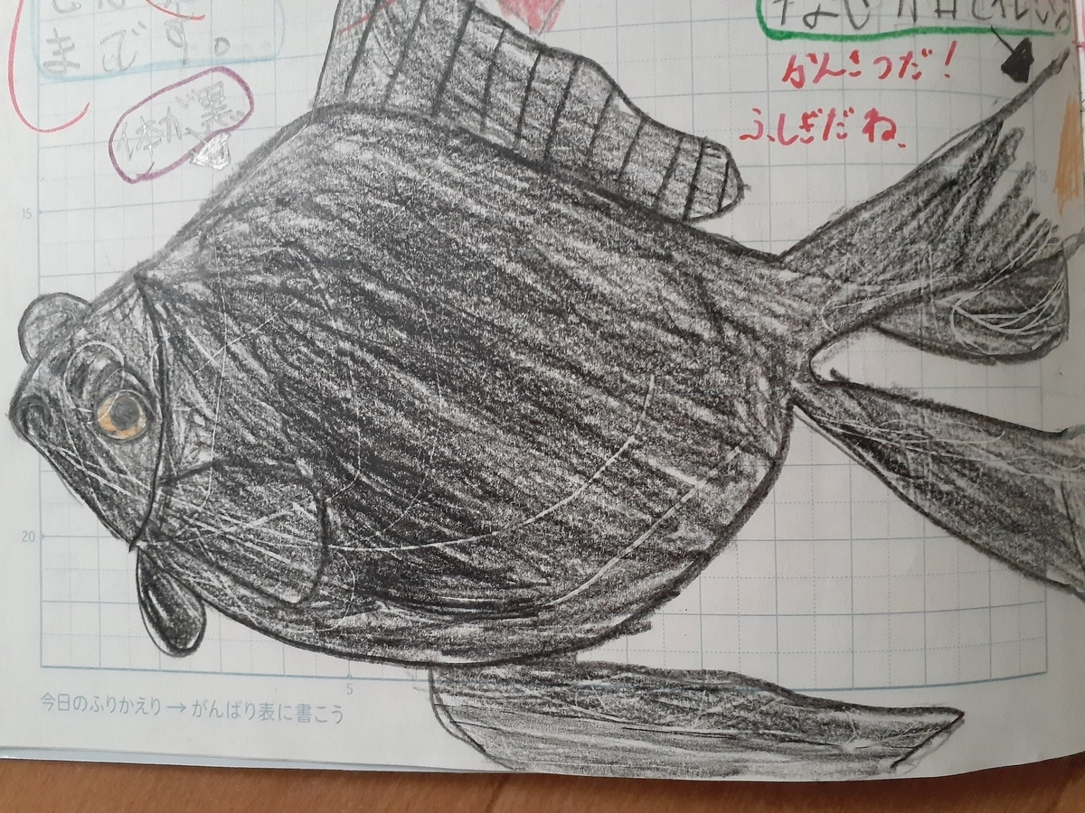 f:id:takamaru1136:20210602105325j:plain