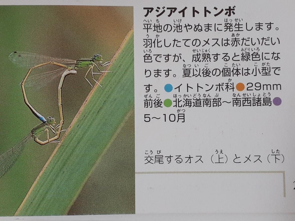 f:id:takamaru1136:20210623135048j:plain
