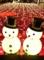 [大阪][梅田][ルクアイーレ][クリスマスプレゼント][限定][人気][ネックレス][ジュエリー][リング][ピアス]