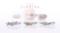 [桜][マリッジリング][春][婚約指輪]