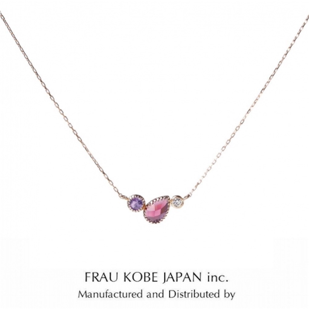 f:id:takamatsu-frau-kobe:20171116185458j:image